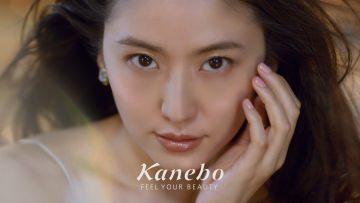 Kanebo Coffretdor / eyeshadow